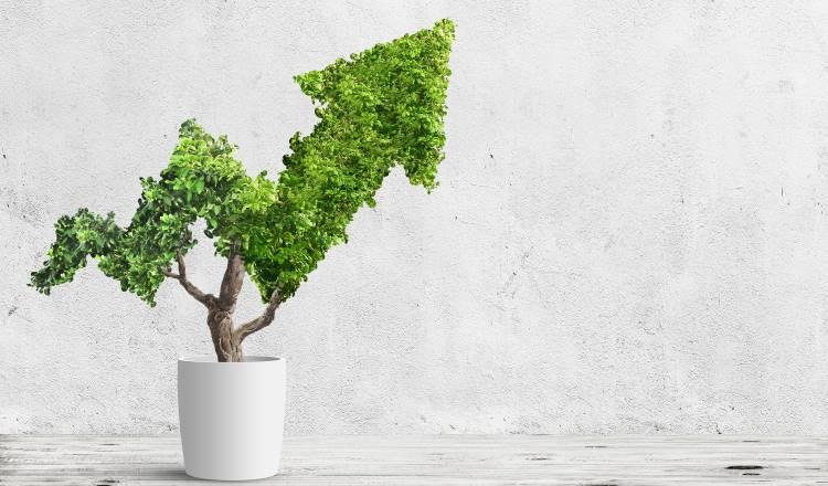 green-economy-5